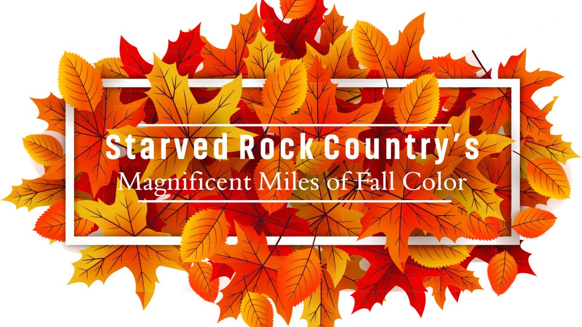 Experience Starved Rock Country's Magnificent Miles of Fall Color